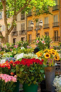 Flores no mercado de Aix-en-Provence, França