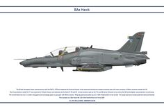 Hawk South Africa 1 by Claveworks on DeviantArt Pictures To Draw, Cool Pictures, South African Air Force, British Aerospace, War Machine, Military Aircraft, Fighter Jets, Beer, Cutaway