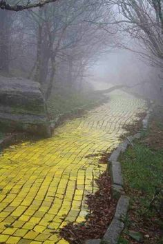 Yellow brick road left behind from Wizard of Oz movie scenes!