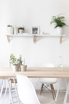 white + raw wood + plants