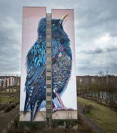 Giant Starling Mural in Berlin by Collin van de Sluijis and Super A