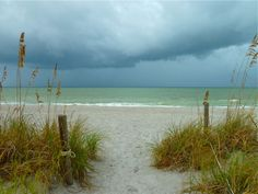 Captiva Island... my home away from home ...my happiest place on earth