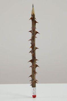 Rose stem, pencil lead and eraser | Artist: Seyo Cizmic