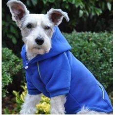 Introducing our completely New line of Sport Hoodies for Pets. They are made to fit comfortable with a snap closure at the neck that makes this product easy to get on and off. The Sport Hoodies come i