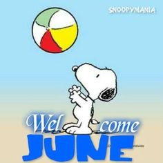 Snoopy Love, Snoopy And Woodstock, Baby Snoopy, Welcome June, Happy June, Winnie The Poo, Snoopy Quotes, Peanuts Quotes, Joe Cool