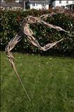 La vie est belle par Penny Hardy, Sculpture, fil d'aluminium et de résine
