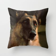 Devotion Throw Pillow by Vanilla Extinction - $20.00