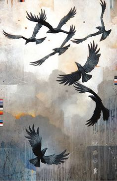 Crows Ravens: #Raven, Craig Kosak.                                                                                                                                                      More
