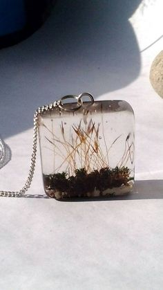 Unique moss pendant made with real moss in eco resin by ZazieWorld