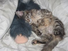 sleeping with her cuddly toy