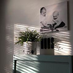 Aurinko ja uusi kukkaruukku. Isot ja pienet ilon aiheet. Aurinkoista sunnuntaita!  #koti #home #myhome #nofilter #interiordesign #interior #sisustus #inredning #asetelma #sun