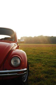 Volkswagen Beetle Photography Inspiration