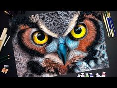 Drawing an Owl - Time Lapse Drawing - YouTube