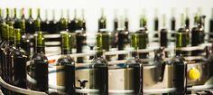 Alkoholilain kokonaisuudistus, tulevaisuuden alkoholi-ja ruokakulttuuri vapaampaa. Alkoholin myynnin vapautus, tulevaisuuden megatrendi?