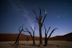 Deadvlei - Was a awesome experience to spend the night at deadvlei watching the stars under those trees. a single exposure shot by Carl Zeiss Milvus 15mm.  For our upcoming workshop in Namibia, feel free to contact me on danyeid@me.com for booking
