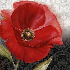 Conrad Knutsen: Poppy Perfection I Keilrahmen-Bild Leinwand Blumen Mohn