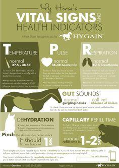 Fact Sheet - Horses Vital Signs and Health Indicators