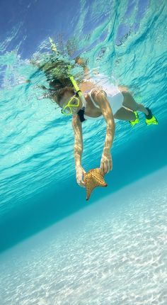 CocoCay, Bahamas. Don your snorkel gear and explore below the turquoise waters of CocoCay. You may even find a sea star!