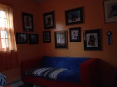 A cozy nook I cuddle with my dogs and do my blogs at .....