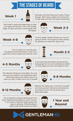 of Beard Growth Infographic from GentlemanHQ. Notice how vital beard oil . Stages of Beard Growth Infographic from GentlemanHQ. Notice how vital beard oil ., Stages of Beard Growth Infographic from GentlemanHQ. Notice how vital beard oil . Beard Growth Stages, Beard Growth Oil, Hair Growth, Beard Styles For Men, Hair And Beard Styles, Beard Growing Tips, Beard Maintenance, Patchy Beard, Beard Styles Patchy