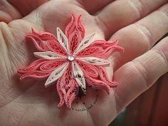 Vánoční hvězda * quillink