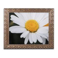 Trademark Fine Art Sweet Splendor Canvas Art by Monica Mize, Gold Ornate Frame, Size: 11 x 14