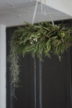 Next Yule! Need to make at least one to hang from the ceiling Next Yule! Need to make at least one to hang from the ceiling Natural Christmas, Christmas Diy, Christmas Decorations, Holiday, Hanging Wall Art, Hanging Plants, Hanging Centerpiece, Flower Chandelier, Xmas Wreaths