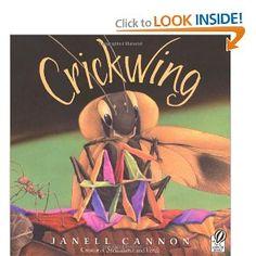 Crickwing Activities