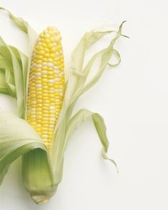 """See the """"Corn Basics"""" in our Corn Recipes gallery"""