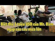 Biệt thự 3 triệu USD của Mr. Đàm ngập sâu sau mưa lớn - Tin Tức Sao Việt