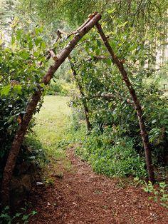 rustic gardens, flowering vines, arch, garden trellis, tree branches