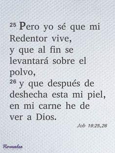 Job 19:25,26