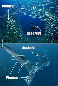 Asshole vs Good guy