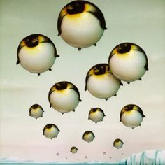 Penguin Art, Penguin Love, Art Pop, Penguin Pictures, Printed Balloons, Ballon, Surreal Art, Limited Edition Prints, Illustration Art