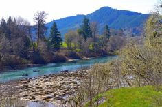 """The River in Elkton, Oregon near the Brandborg Winery, which was named Wine Press Northwest's """"Winery of the Year"""" in 2015."""