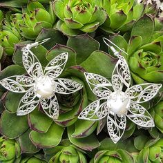 Instagram photo by silverfiligree - In my garden #garden #earrings #silverfiligree #silver #filigree #filigrana #filigran #филигран #филигрань #lifeofajeweller #Skopje #Macedonia #flowers #spring