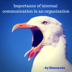 importance of internal communication within an organisation Communication is at the heart of any organization  significant time, thought  and money are invested in external communication, influencing public perception   is internal communication, even though it is just as important.