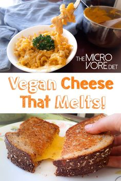 Ooey gooey stretchy vegan cheese that melts! Enjoy on pasta and vegan pizza!Ingredients½ cup hemp cup cup of carrots, chopped a Vegan Cheese Recipes, Vegan Sauces, Delicious Vegan Recipes, Vegan Foods, Vegan Dishes, Dairy Free Recipes, Vegetarian Recipes, Vegan Cheese Pizza, Vegan Cheddar Cheese