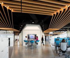 MOI Offices - Washington DC - Office Snapshots