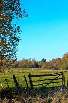Autumn in the Lithuanian countryside.
