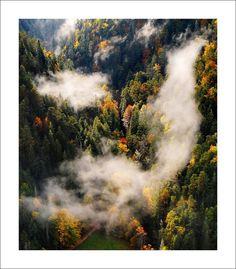 Pieseň lesa, Slovenský raj Raj, Schengen Area, Heart Of Europe, Big Country, Central Europe, Bratislava, Lonely Planet, Czech Republic, Hungary