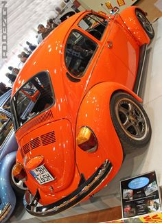 German look 1600 Beetle