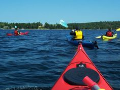 Brace yourself for a day full of adventure. On this expedition you get to experience Nova Scotia by land and sea. Hiking Tours, Group Shots, Adventure Tours, Nova Scotia, Day Trips, Kayaking, Boat, Earth, Water