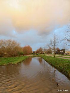 Kleurenstorm ... http://godisindestilte.blogspot.nl/2018/01/kleurenstorm.html