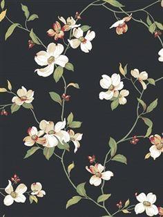 Resultado de imagen para Black background with Magnolias