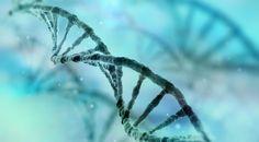 Sadece Su İçilerek Kötü Hücrelerden Kurtulmayı Öngören Nobel Ödüllü Araştırma: Otofaji Diyeti - Ekşi Şeyler