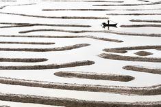 Maze| Tugo C.Y. Cheng        «À marée basse, les fonds marins sont exposés et formentun labyrinthe sur l'eau dans lequelles pêcheurs peuvent ramer.»
