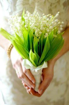 Lírio do vale – amuleto da sorte. Cores: branca e rosa. Flor delicada e nobre, também foi usada no bouquet da Kate Middleton!