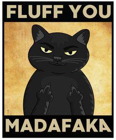 Funny Grumpy Cat Memes, Funny Animal Memes, Funny Animal Videos, Funny Cats, Funny Animals, Cute Animals, Black Cat Art, Black Cats, Crazy Cat Lady