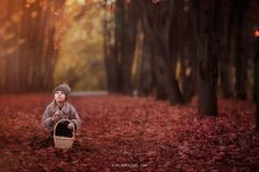 Falling Leaves Free Photoshop Tutorial for Photographers